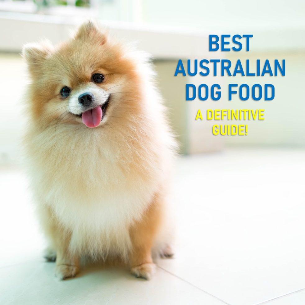 Best Australian Dog Food