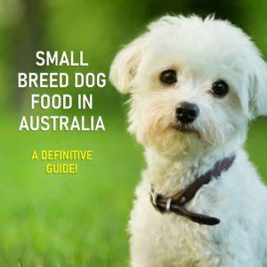 Small Breed Dog Food